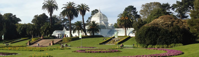 Wordless Wednesday: At the Conservatory of Flowers